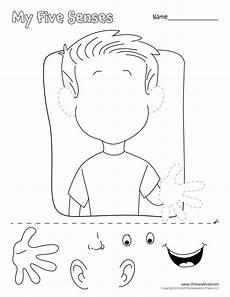 the 5 senses activities worksheets 12584 αποτέλεσμα εικόνας για my five senses lapbook feelings in kindergarden senses preschool