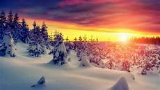 4k wallpaper nature winter wallpaper winter forest sunset 4k nature 5288