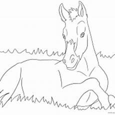 ausmalbilder pferde geburtstag pferd ausmalbilder fohlen ausmalbilder pferde viele malvorlagen mit pferden