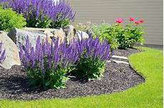 how to a beautiful garden in sun