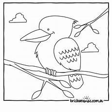 australia animals coloring pages 16900 australian animals colouring pages australian animals animal coloring pages animal templates