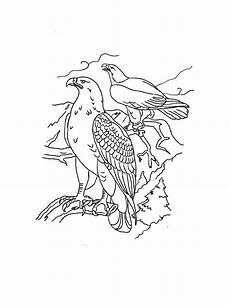 Malvorlagen Kinder Adler Ausmalbilder Malvorlagen Adler Kostenlos Zum