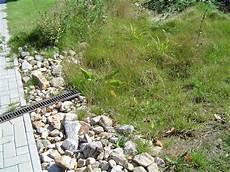 Regenwasserversickerung Im Garten - versickerung kies suche landscape water