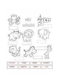 animal worksheet for grade 1 14230 worksheet animals 1 worksheets animals pictures animal worksheets