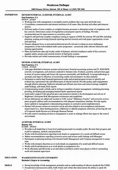 auditor internal audit resume sles velvet