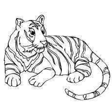 big animals coloring pages 16904 top 20 free printable tiger coloring pages animal coloring pages coloring pages
