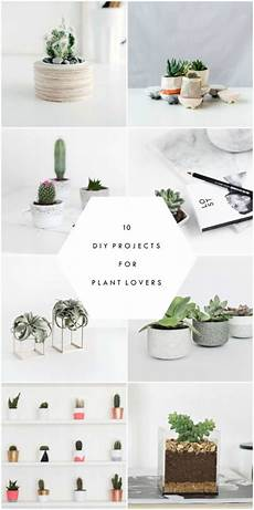 10 diy projects for plant the beautydojo