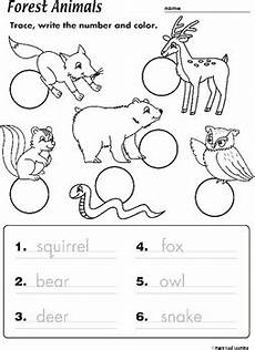 worksheets on animals for grade 1 14265 forest animals worksheet by maple leaf learning tpt