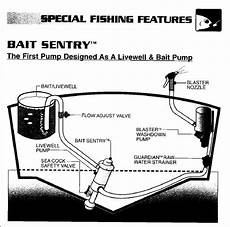 washdown pump issue sea pro boat owners