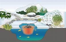 teich winterfest machen teichpflege im winter was ist n 246 tig oase teichbau de