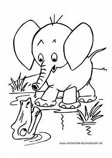 ausmalbilder elefant am fluss tiere zum ausmalen