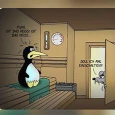 12 besten sauna bilder auf lustige bilder