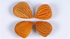 Vergiftungen Durch Bittere Aprikosenkerne Ndr De