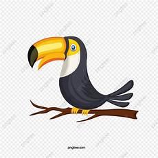 Paling Keren 30 Gambar Kartun Burung Enggang Gambar