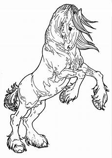 rearing coloring pages at getdrawings free