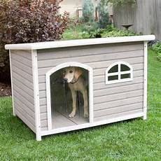 spotty xl insulated flat roof dog house with heater at hayneedle
