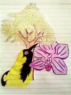 dibujo para colorear del araguaney poes 205 a infantil historia del araguaney la orqu 205 dea y el turpial