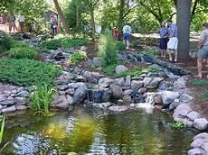 pond life home page