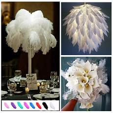 wholesale 6 26inch 10 20 50pcs ostrich feathers