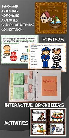 word relationships synonyms antonyms words relationship