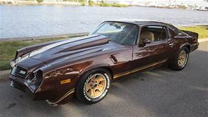1981 Chevrolet Camaro Z28  1 Chevy Muscle Cars