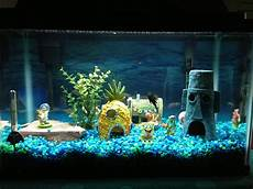 Fish Tank Decorations A Simple Guide Aquariphiles