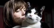 darf vermieter katze verbieten das darf der vermieter nicht pauschal verbieten