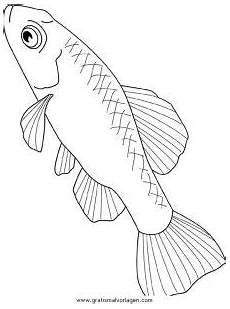 verschiedene fische 128 gratis malvorlage in fische tiere