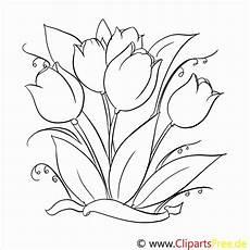 Blumen Malvorlagen Kostenlos Zum Ausdrucken Neu Frisch Malvorlagen Blumen Zum Ausdrucken In 2020
