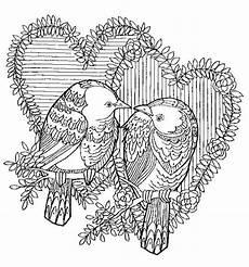 Ausmalbilder Erwachsene Vogel 8208 Ausmalbuch Vorlage Vogel Paerchen Zencolor Jpg 620