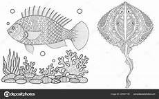 malvorlagen unterwasserwelt pflanzen coloring and