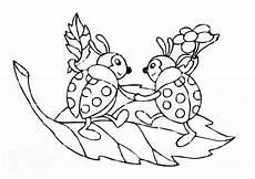 Insekten Malvorlage Kostenlos Ausmalbilder Marienk 228 Fer Malvorlagen Ausdrucken 3