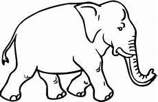 Gambar Gambar Sketsa Hitam Putih Mewarnai Gajah
