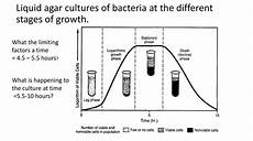the main types of nutrition in microorganisms online presentation