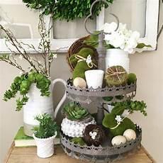 wie dekoriere ich shop our instagram st paddy s tray 3 17 16 trays