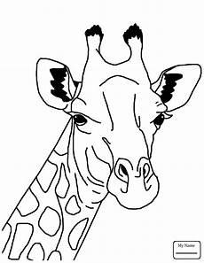 giraffe drawing for at getdrawings free