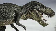 it turns out t rex couldn t stick out its tongue history