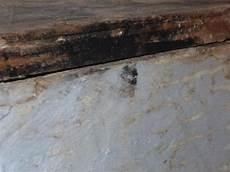 Koennte Das Schimmel Sein Holz Badezimmer Fliesen