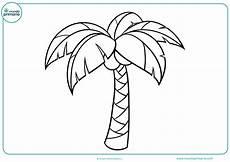 palma llanera para dibujar palmeras para imprimir para maqueta dibujo de una palmera para descargar mundo primaria