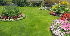 3 simple tips for a more beautiful lawn my garden life