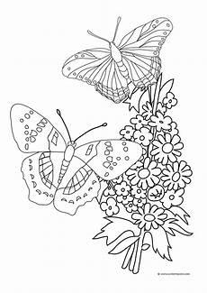 Malvorlagen Blumen Und Schmetterling Butterfly Coloring Pages