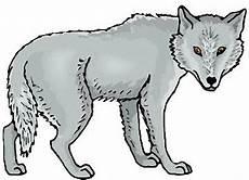 Malvorlagen Wolf Pdf Window Color Vorlagen W 246 Lfe