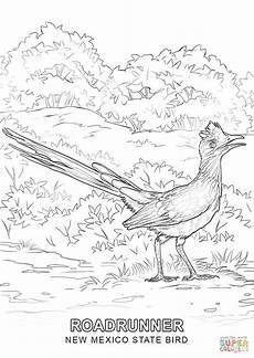 animals of mexico coloring pages 17091 new mexico state bird coloring page free printable coloring pages with images bird coloring