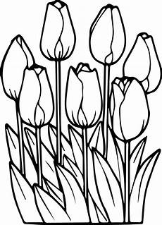 printable tulips flower coloring pages k5 worksheets