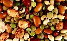 proteine vegetali alimenti proteine vegetali ed animali importanza nell alimentazione