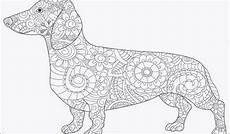 Malvorlagen Tiger Pool Ausmalbilder Hunde Genial Ausmalbilder Hund Inspirierend