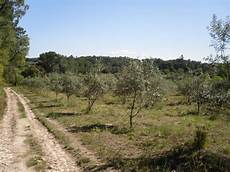 Recherche Terrain Agricole Pas Cher Terrain Agricole Location Auto Clermont