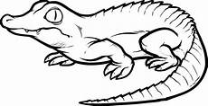 malvorlagen fur kinder ausmalbilder krokodil kostenlos
