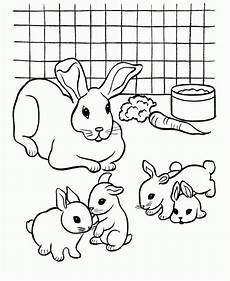 Malvorlage Hasenbaby Get This Bunny Coloring Pages Free To Print 84061