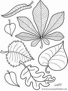 Ausmalbilder Obst Herbst Imagini Pentru Malvorlagen Herbst Obst Autumn Leaf